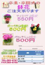 画像:マルチグループより 卒業・卒園式鉢花ギフト
