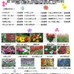画像:フライルグループより 6月のお花カタログ